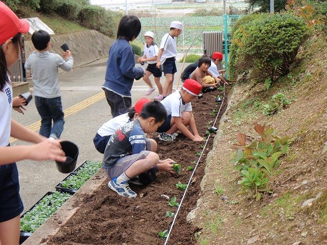 http://www.tahara.ed.jp/nanbu-e/blog/blog-PB120123.jpg