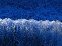 Winter.jpgのサムネール画像